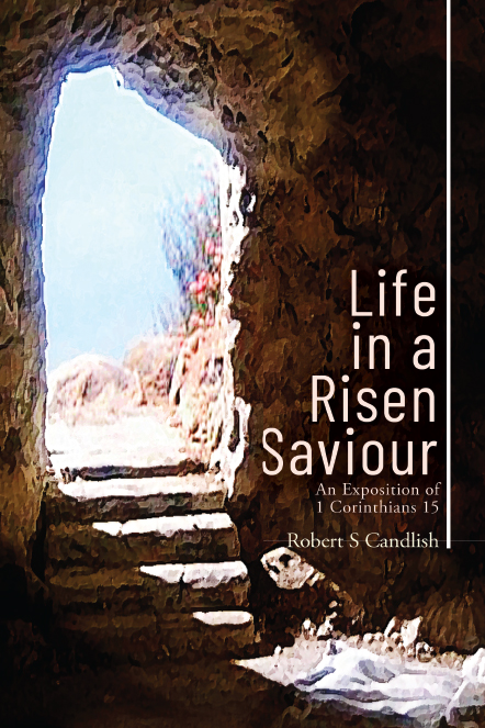 Life In A Risen